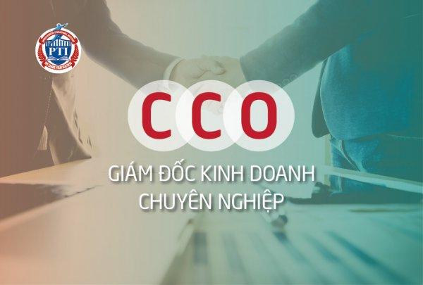 Khóa học CCO Giám đốc kinh doanh - Trường doanh nhân PTI